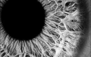 Olhos Podem ser Treinados para Você Ver Melhor, Ter Mais Nitidez e Foco