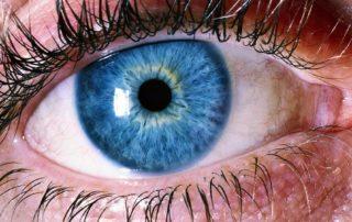 Detox Visual: 5 Passos para Você Descansar os Olhos